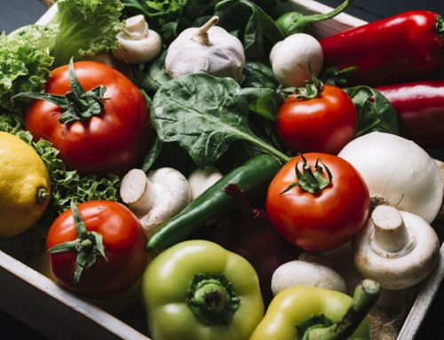 اهمیت مصرف محصولات ارگانیک برای گیاه خواران (وگان ها)
